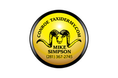 Conroe Taxidermy – Mike Simpson